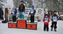Zimowa olimpiada na stokach Stożka