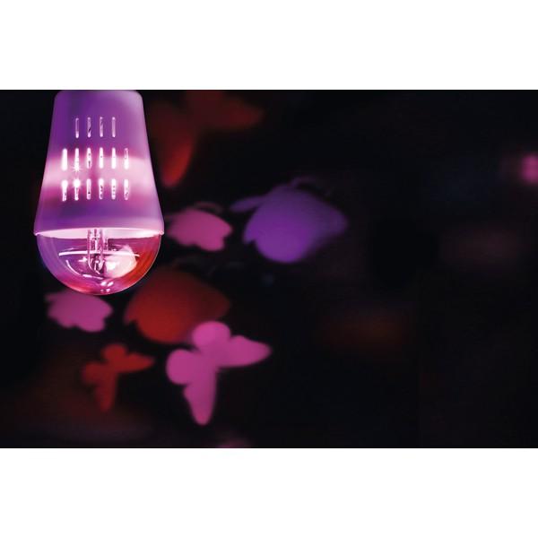 Żarówka LED - motyle