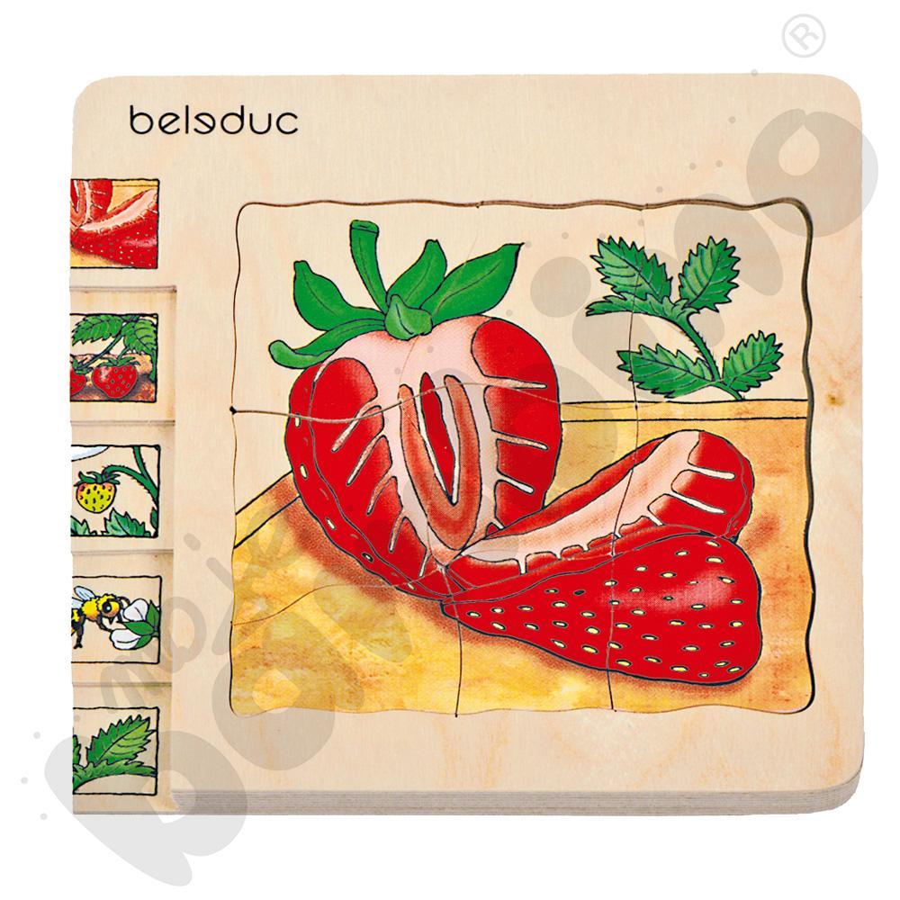 Edukacyjne puzzle warstwowe - truskawka