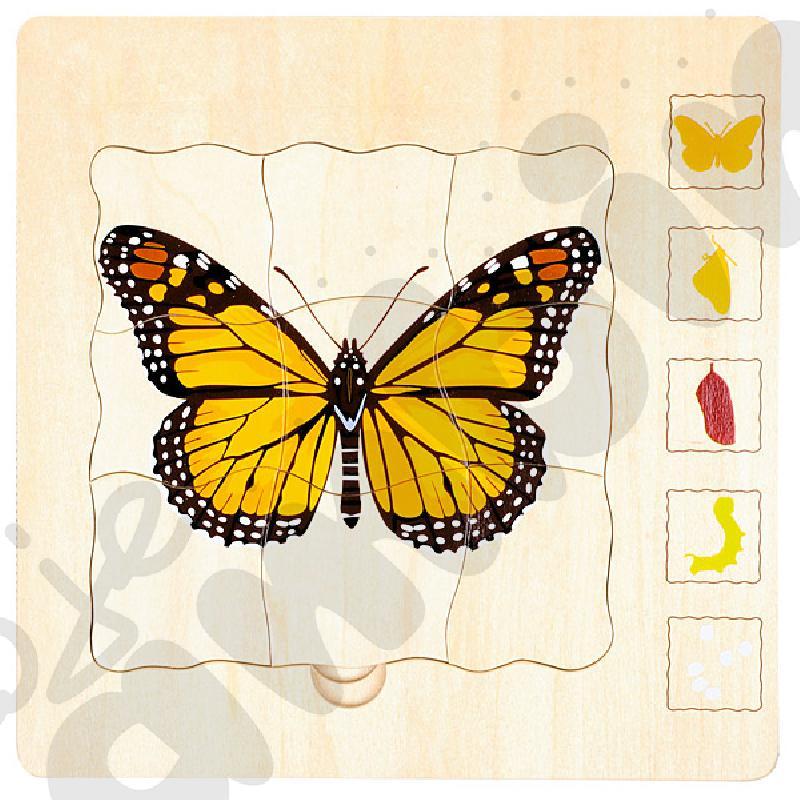 Puzzle 5-warstwowe motyl