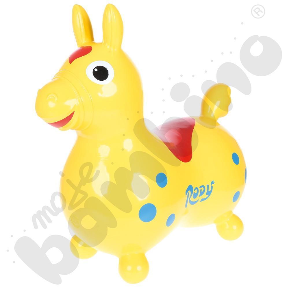 Konik Rody - żółty