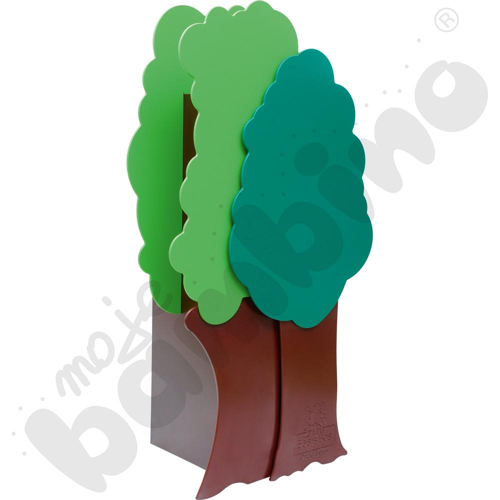Szafa drzewo