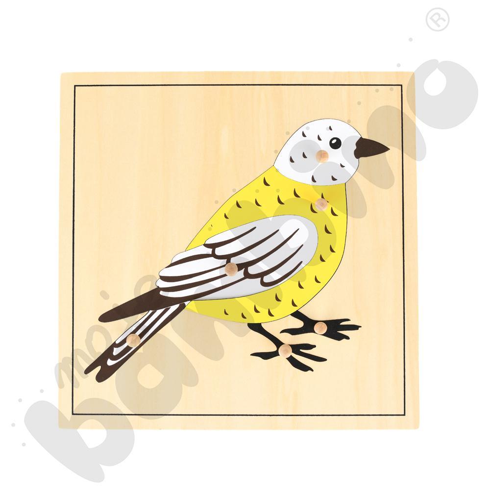 Ptak - puzzle