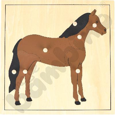 Koń - puzzle