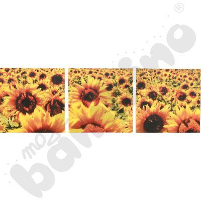 Słoneczniki 3 elem. - obraz