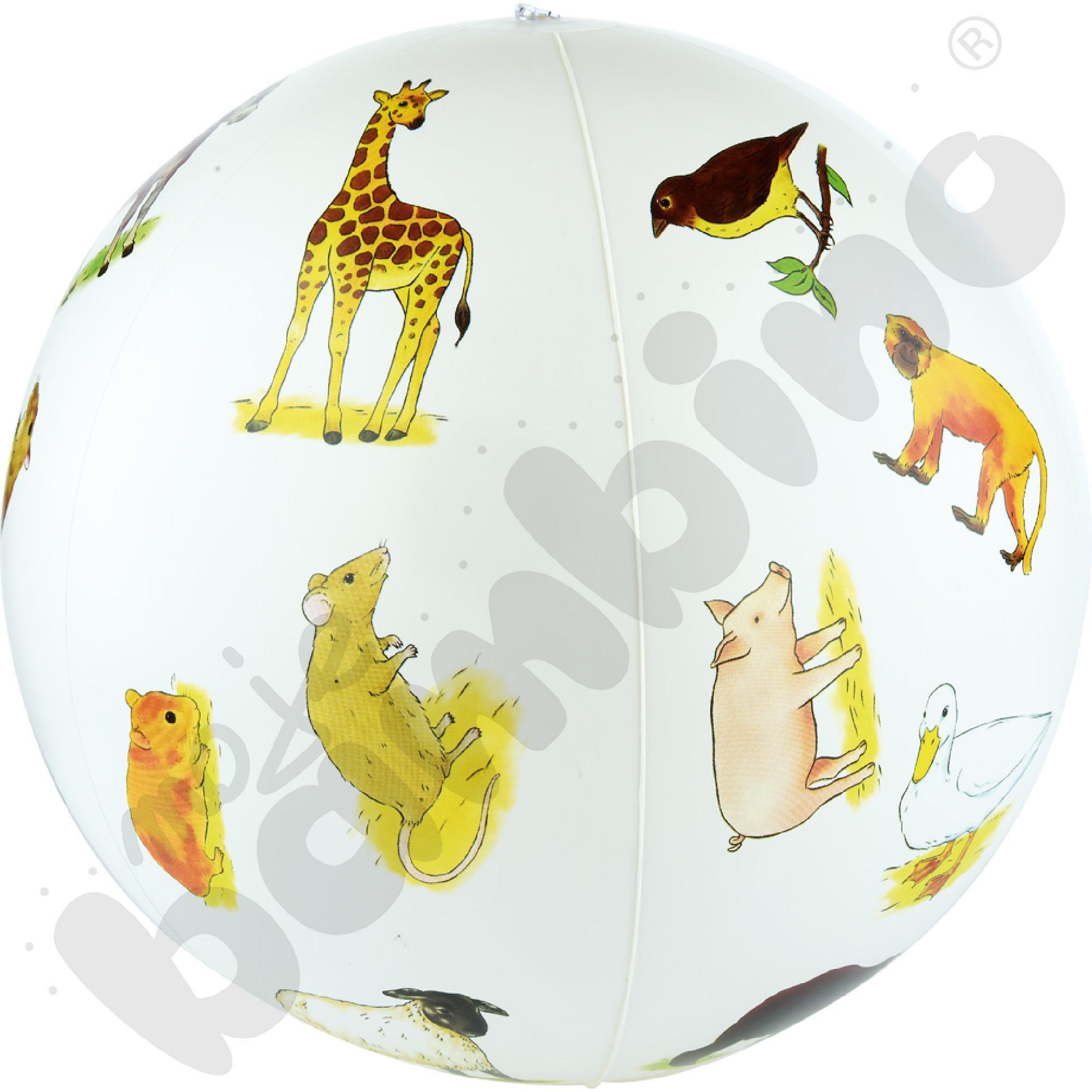 Piłka - zwierzętaaaa