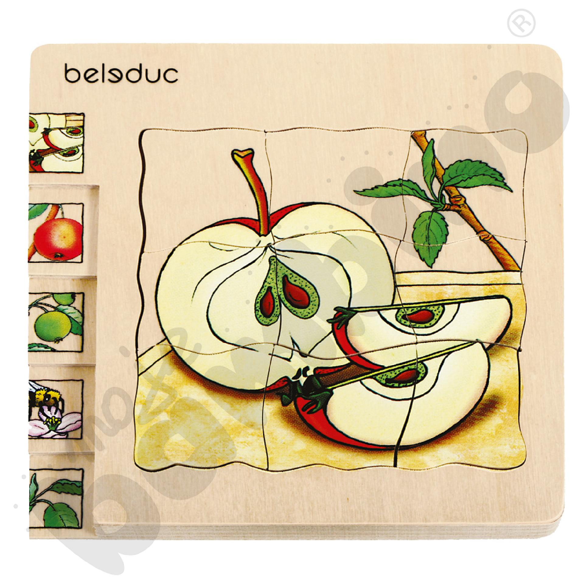 Edukacyjne puzzle warstwowe - jabłko