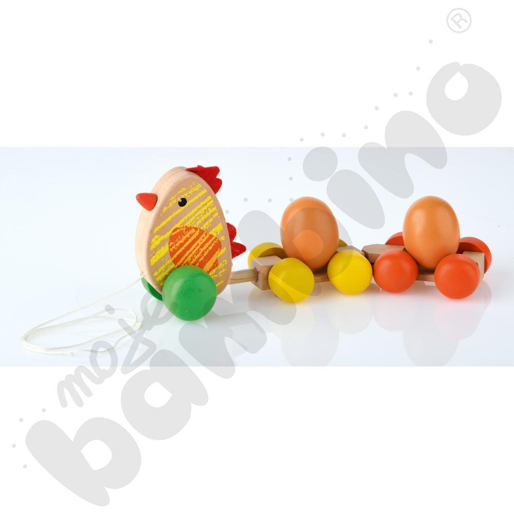 Kurka z jajkami do prowadzenia