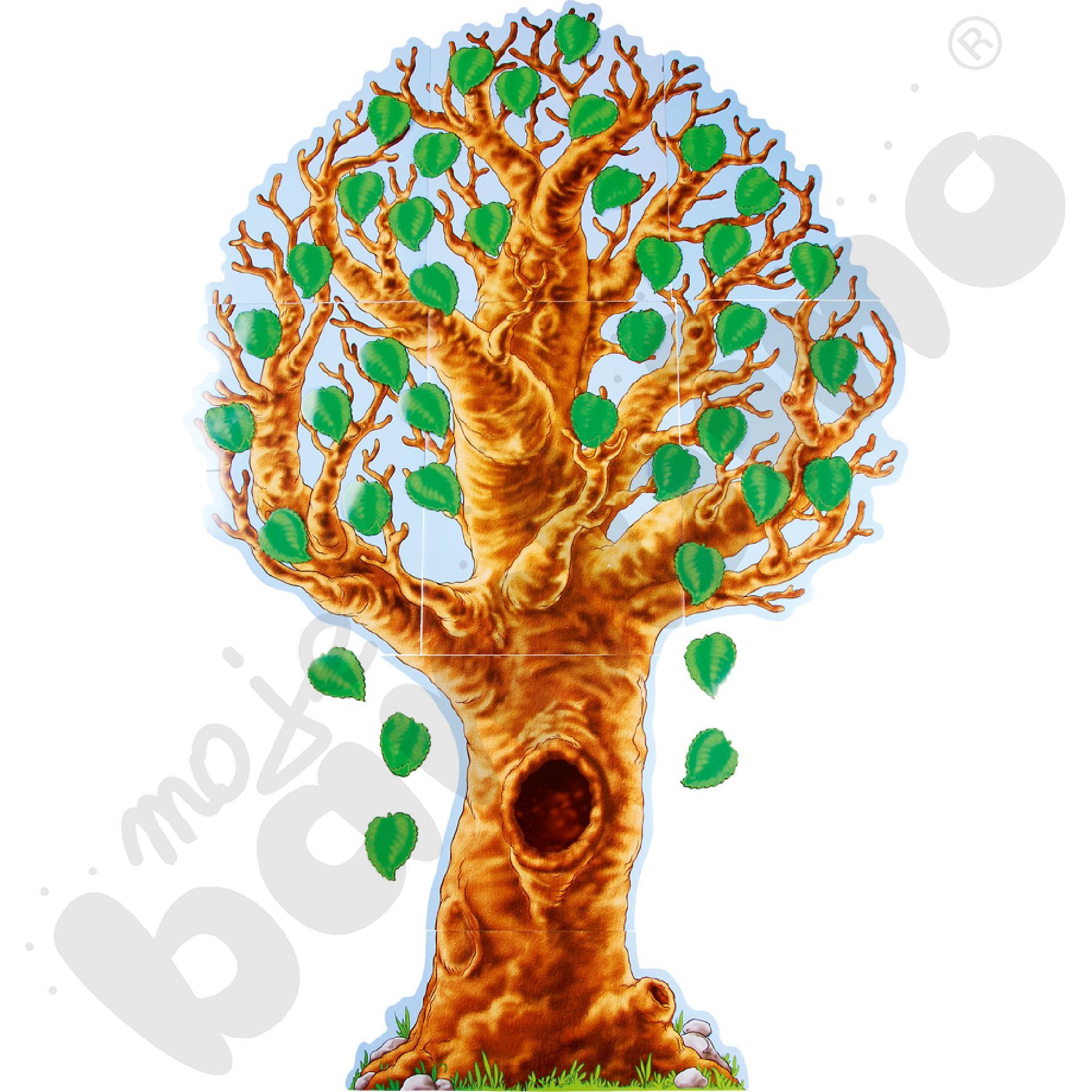 Plansza drzewo