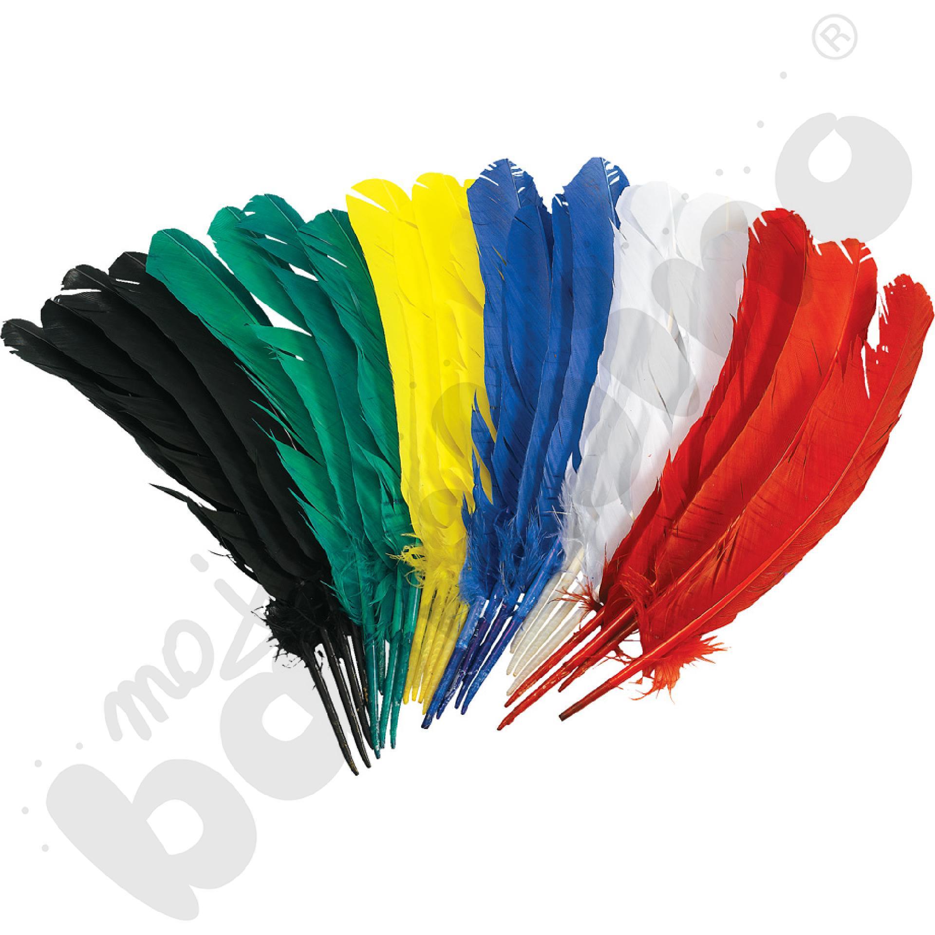 Pióra łabędzie - kolorowe
