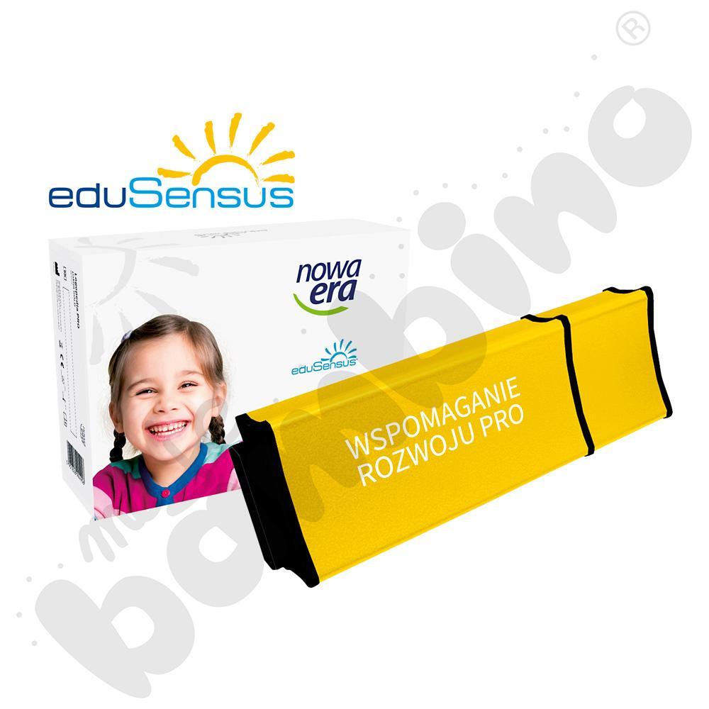 eduSensus Wspomaganie Rozwoju PRO v 3.1 [USB]