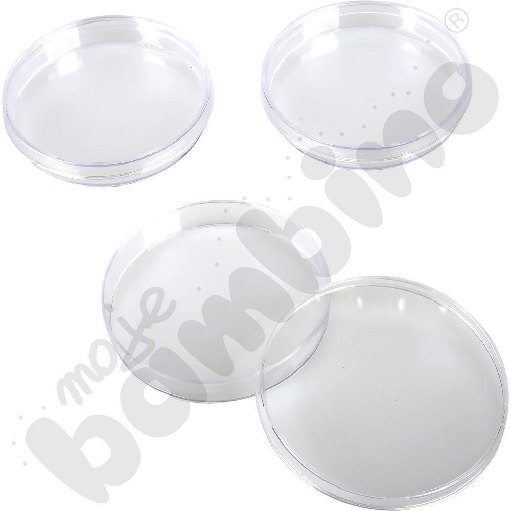 Płytki Petriego