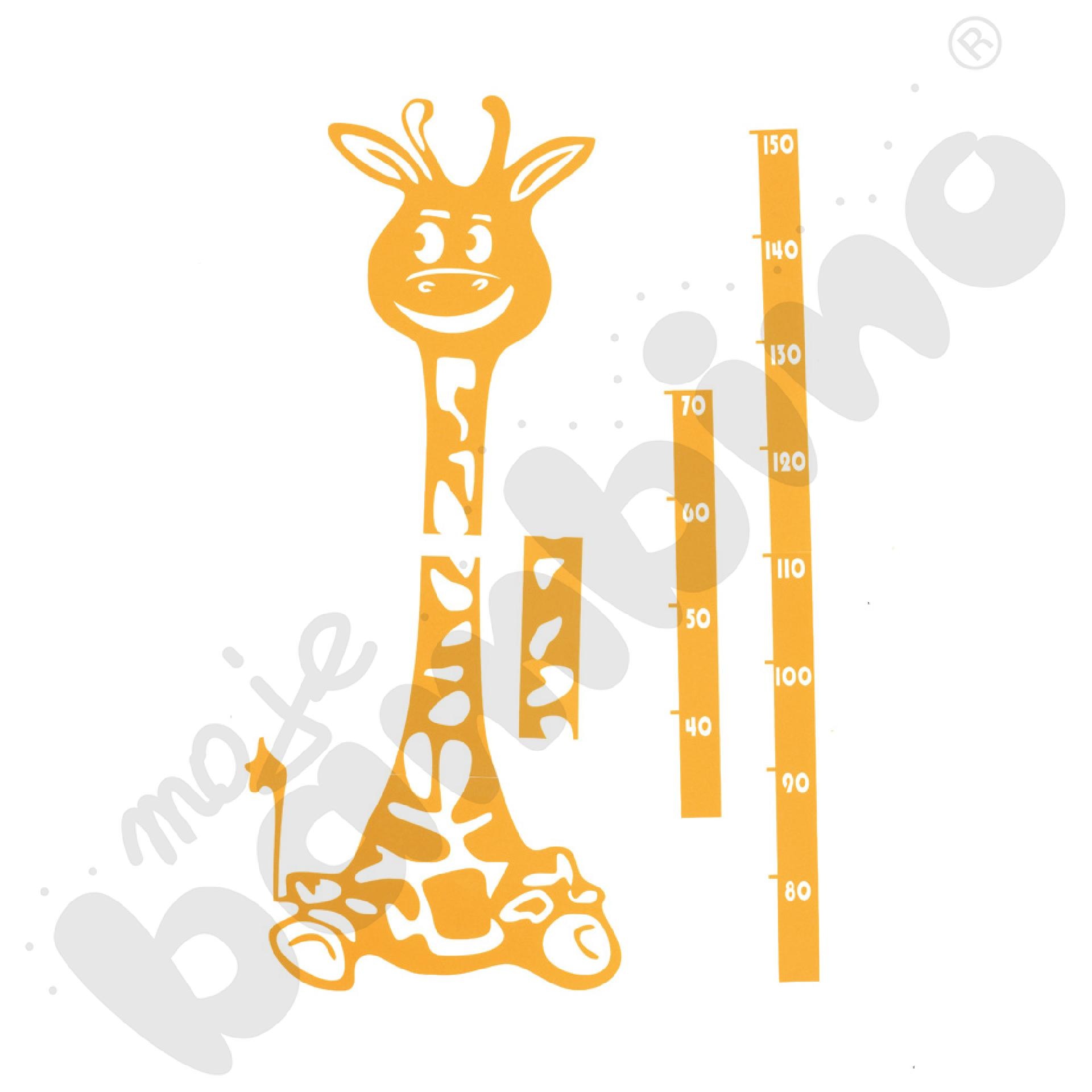 Miarka wzrostu - żyrafa