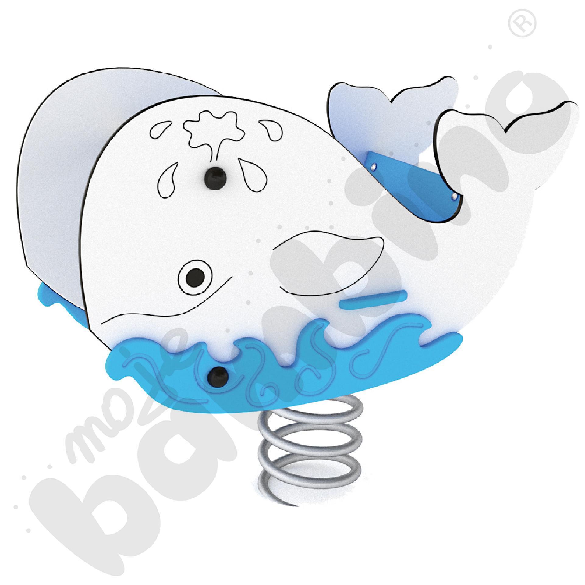 Bujak Wieloryb